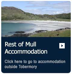 description-box-mull