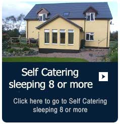 Self Catering eight plus