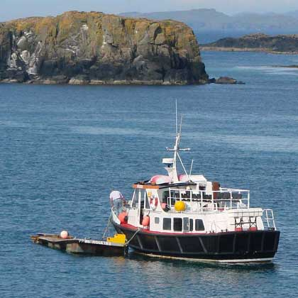 boat trips from Tobermory