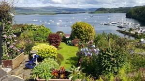 Summer Garden and view
